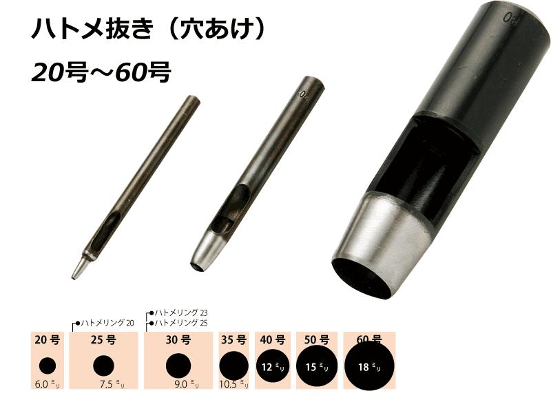 kt-hato2